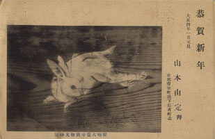 大正年賀状・大正4年(1915年)